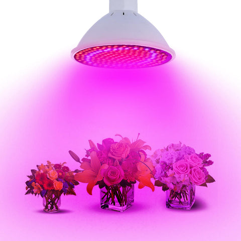 20W E27 LED Plant Grow Light Bulb - GalaxyDeals