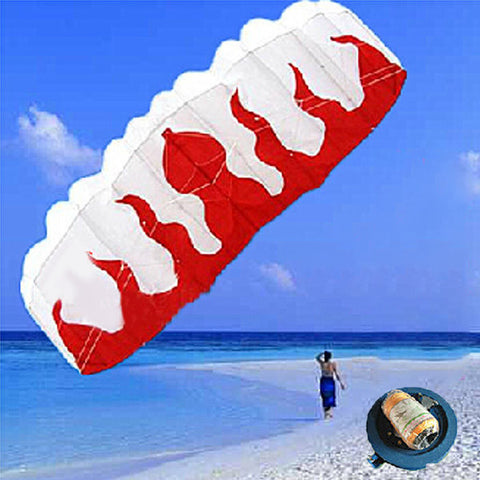 *LOCAL STOCK* Braided Line Flame Parachute Sports Beach Kite