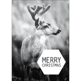 Christmas postcard deer Merry Christmas