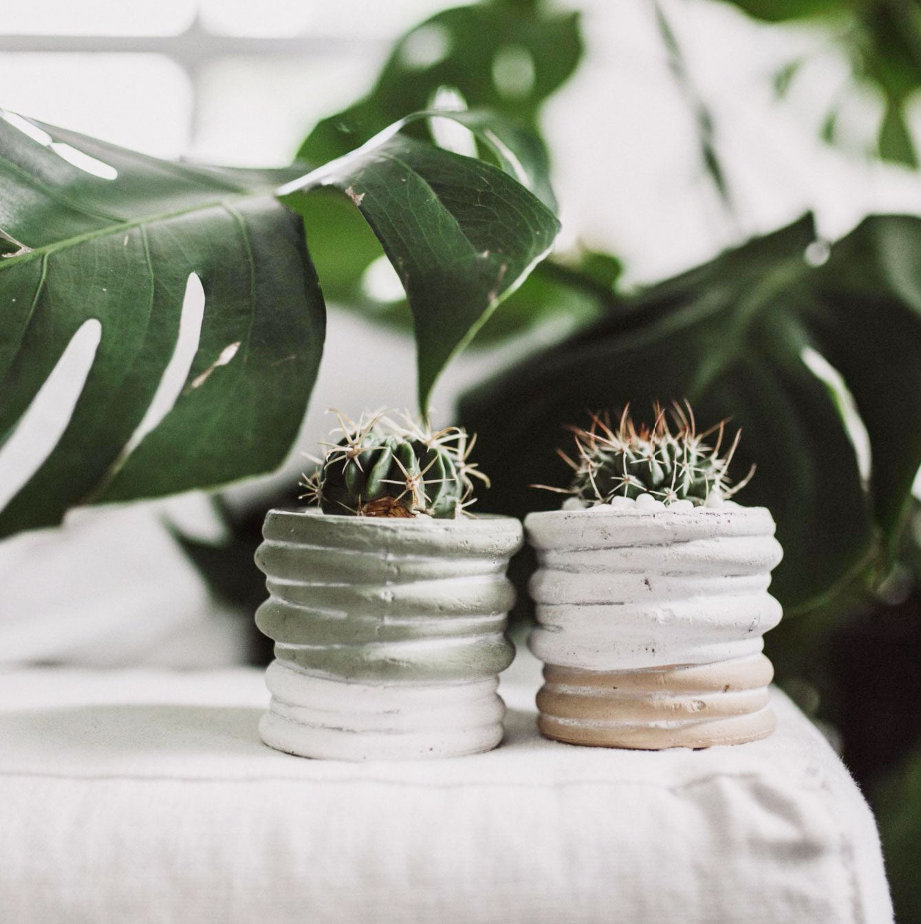 Two Toned Textured Planter