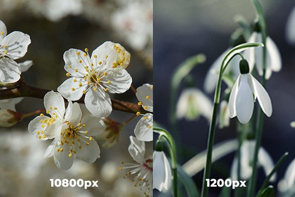 Samsung S20 Ultra features 108MP camera