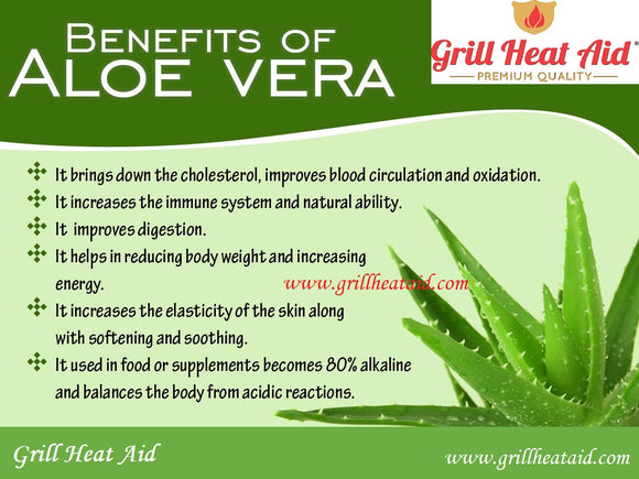 Amazing Health benefits of Aloe Vera Discovered by Grill Heat Aid