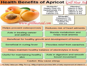 Scientific Health Benefits of Apricot Suggested by Grill Heat Aid