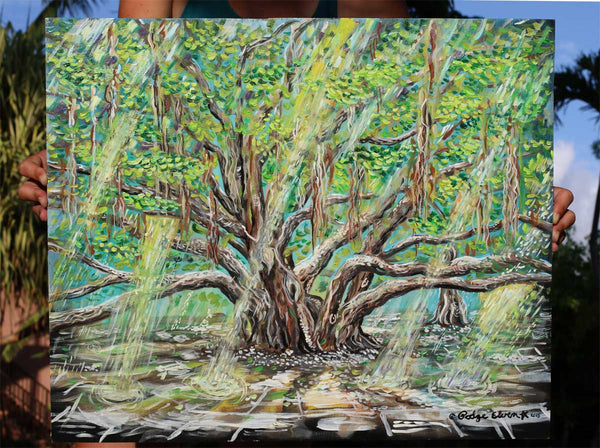 Morning Light Oil Painting, Lahaina Banyan Tree, Banyan Tree Park Maui