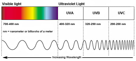 visible light and uv spectrum