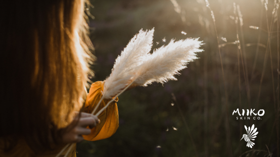 banner image with person holding pampas grass