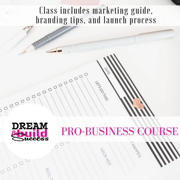 Pro Business Course - DreamBuildSuccess