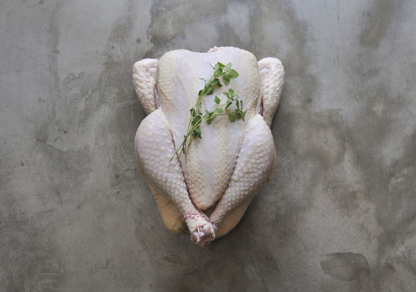 Whole Actually Free Range Chicken: Big Holiday Bird