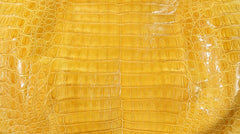 Glazed Yellow Crocodile