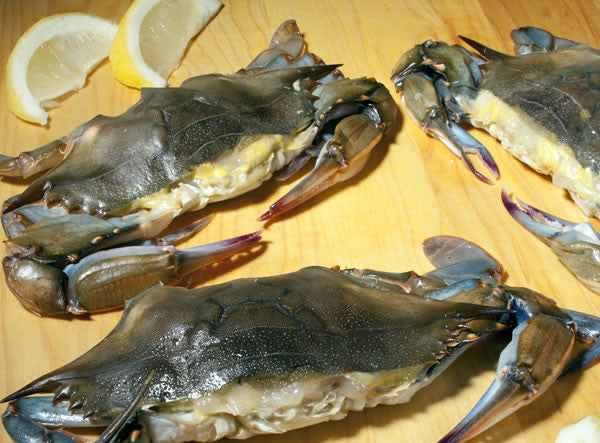 Frozen oft Shell Crabs