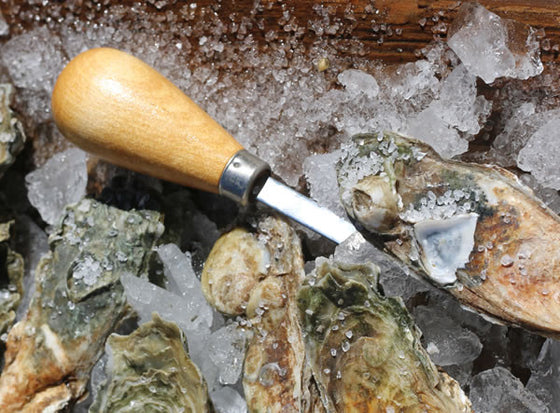 Oyster Shucking Knife