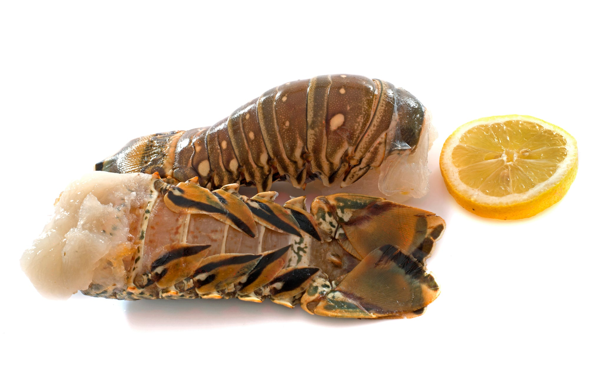 2 Pack Lobster Tails