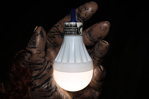 LED Lightbulb | Brighten up your night