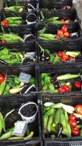 Produce boxes from Bush-N-Vine
