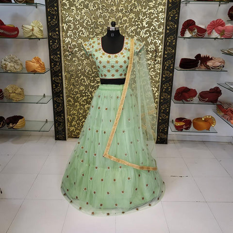 Pista Color Net Women's Lehenga - AB-254