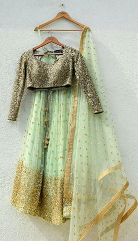 Pista Green Color Net Lehenga - IV-15