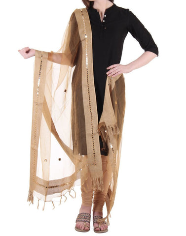Beige Color Chanderi Tissue Net Dupatta - PLM07