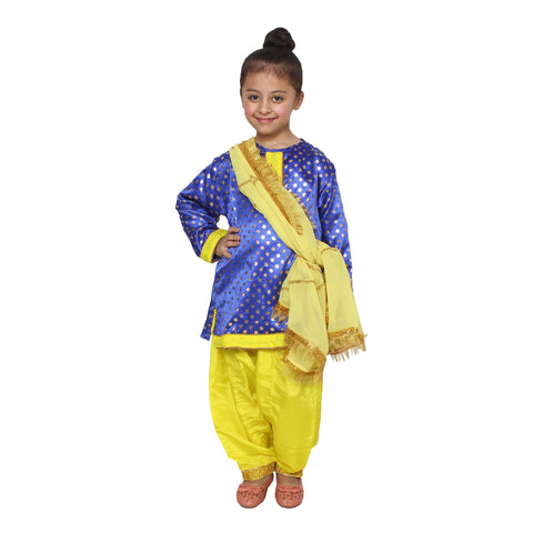 Multi Color Cotton Blend Fancy Costume Dress  - Punjabi Girl-1