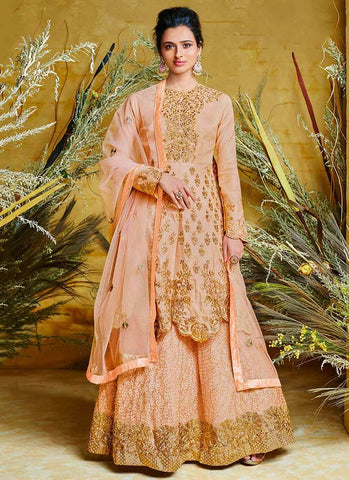 Peach Color Net Silk Stitched Dress - RS2501