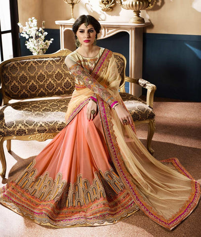Multi Color Georgette and Net Saree - RT-009257