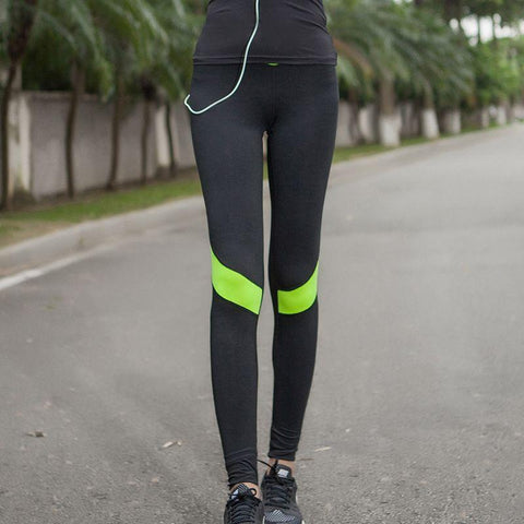 Multi Color Stretchable Tight pant - SKI0018