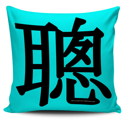 Clever - Feng Shui Zen Pictograph Pillow Cover!