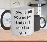 Love Is All You Need And All I Need Is You Mug (7 Options Available)