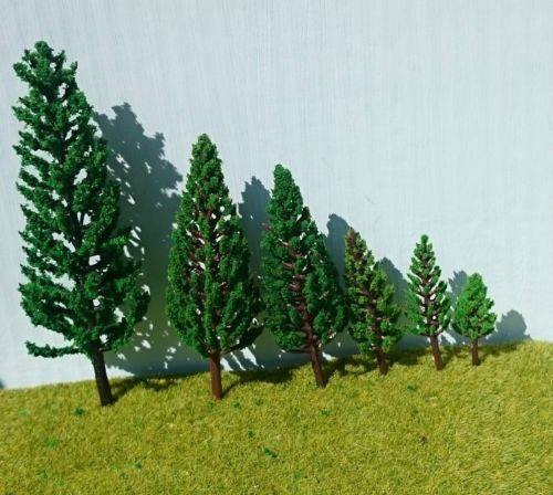 Poplar Conifer Tower Trees: 3.8cm-16cm high