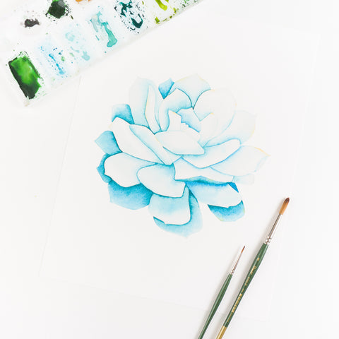 Blue Succulent Watercolor Print By Kira Gulley