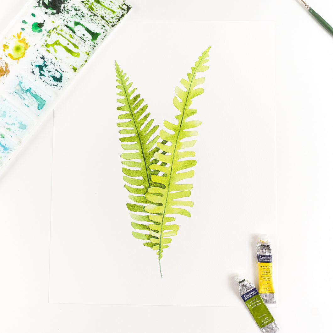 Deer Fern Watercolor Print By Kira Gulley