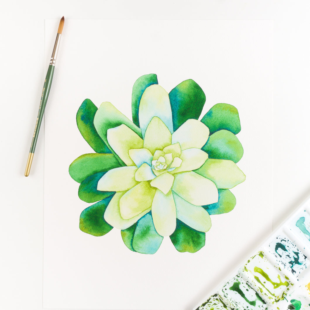 Green Succulent Watercolor Print By Kira Gulley