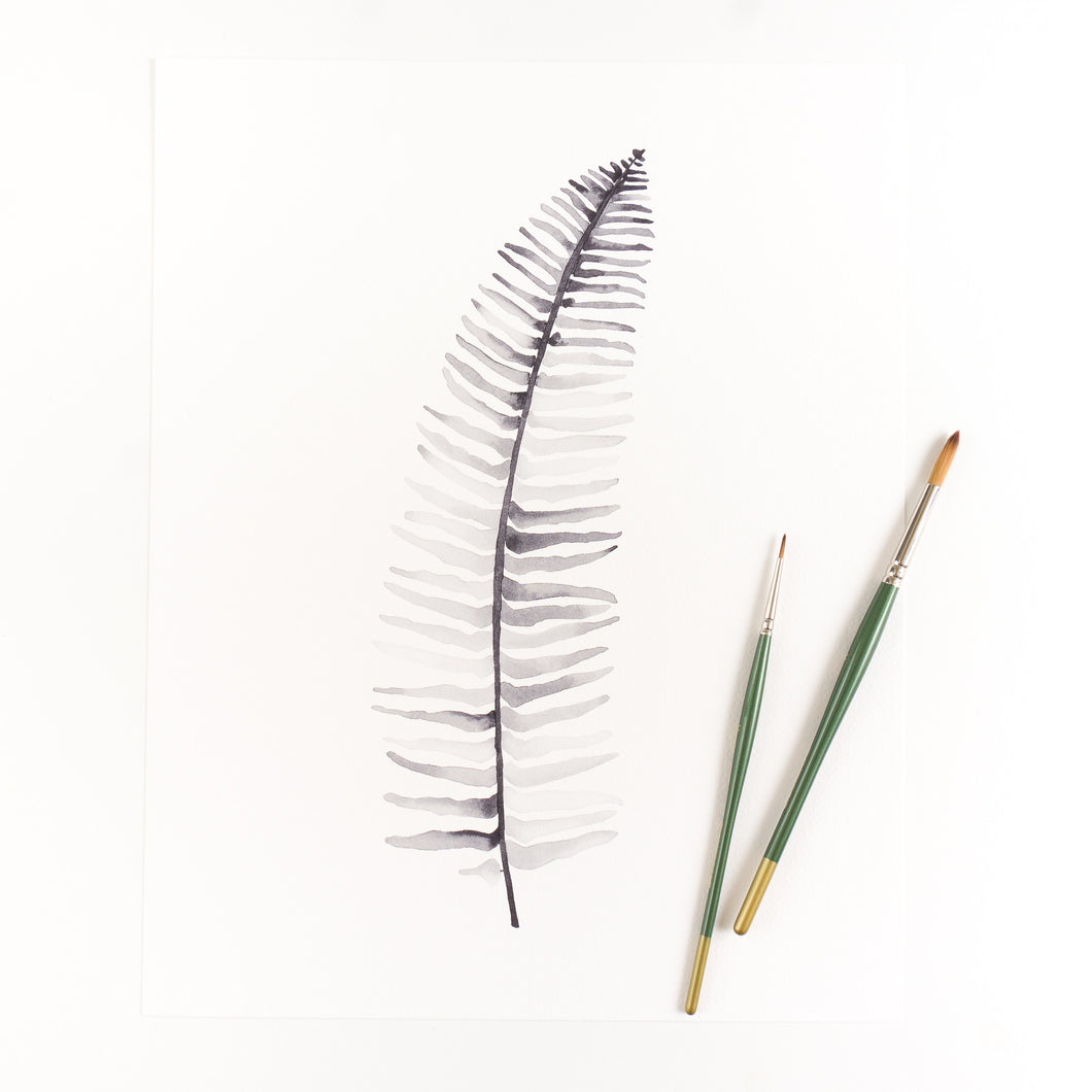 Narrow Leaf Sword Fern Watercolor Print By Kira Gulley