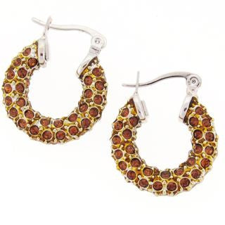 Small Bronze Crystal Hoop Earrings
