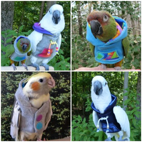 End of Winter Sale - Get 10% off all Avian Fashion Hoodies!!!