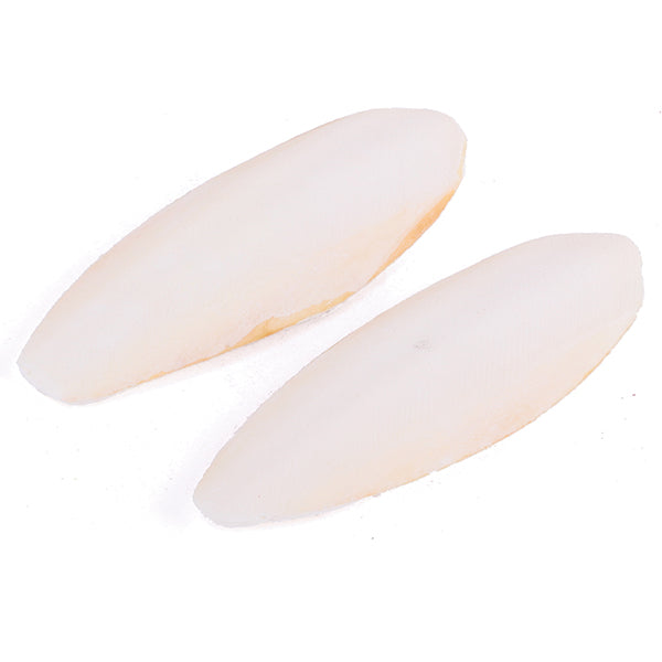 Cuttlebone Natural - Small 2 Pack