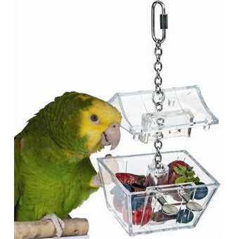 Parrots Treasure Chest-PARROTBOX PET SUPPLIES