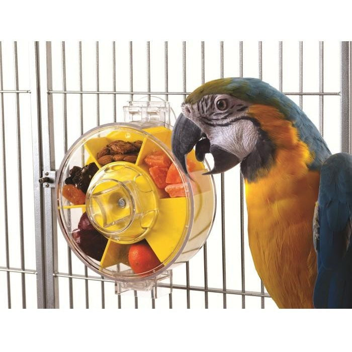 Creative Foraging Generation 2 Large Wheel-PARROTBOX PET SUPPLIES