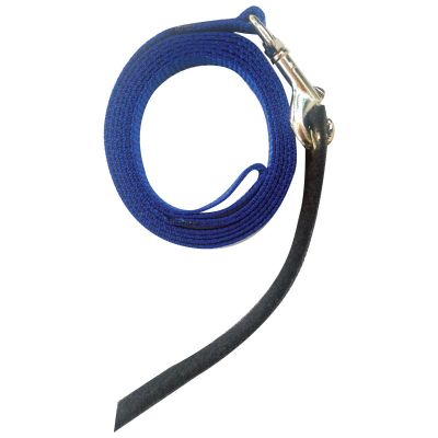 Avian Fashions Anchor Line - Royal Blue-PARROTBOX PET SUPPLIES
