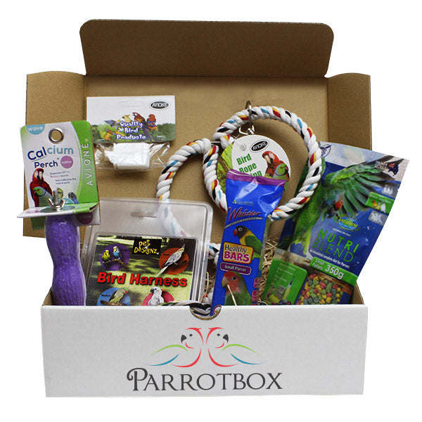 Single Parrotbox Gift Box