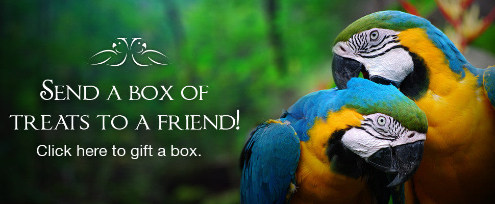 Gift a box of parrot treats to a friend! Click here to get started.