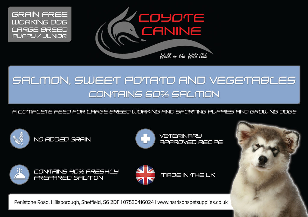 Coyote Canine Grain Free Puppy/Junior Large Breed, Salmon, Sweet Potato & Vegetables - Harrison's Pet Supplies