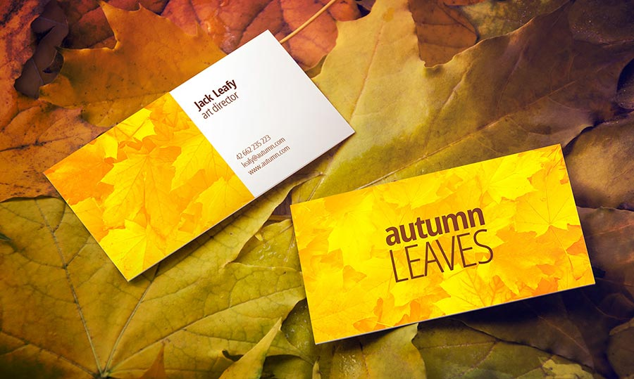 Free Autumn Leaves Business Card Mock-Up - CreativeBooster
