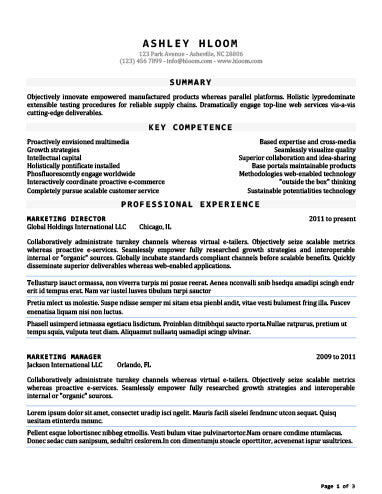 Free Seasoned Combination CV Resume Template in Microsoft Word (DOCX ...