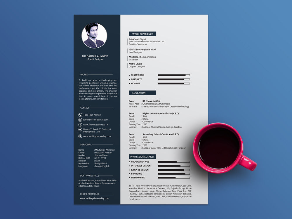 Free Cool CV Resume Template With Clean And Elegant Design In Illustrator AI Format