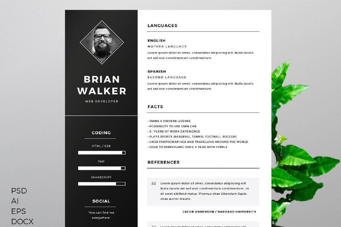 real free resume template