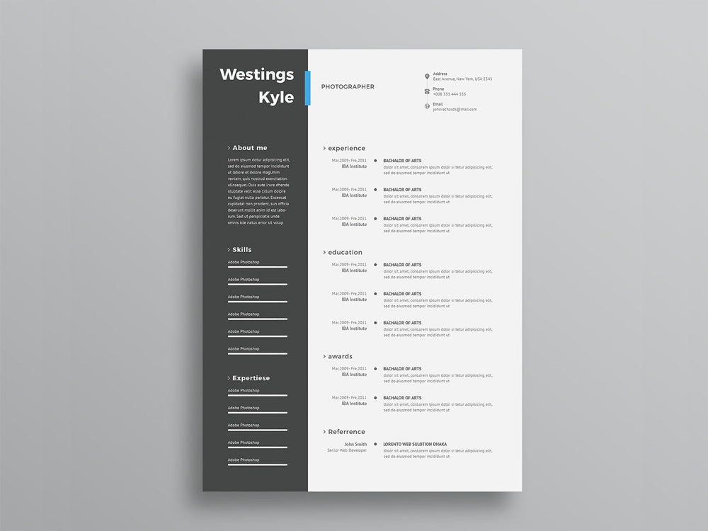 free ultra minimal two column photo resume cv template