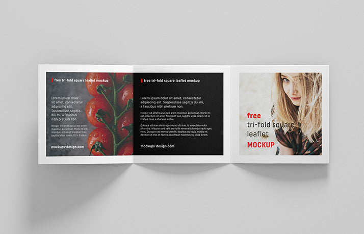 free 4 x square trifold brochure leaflet mockup creativebooster