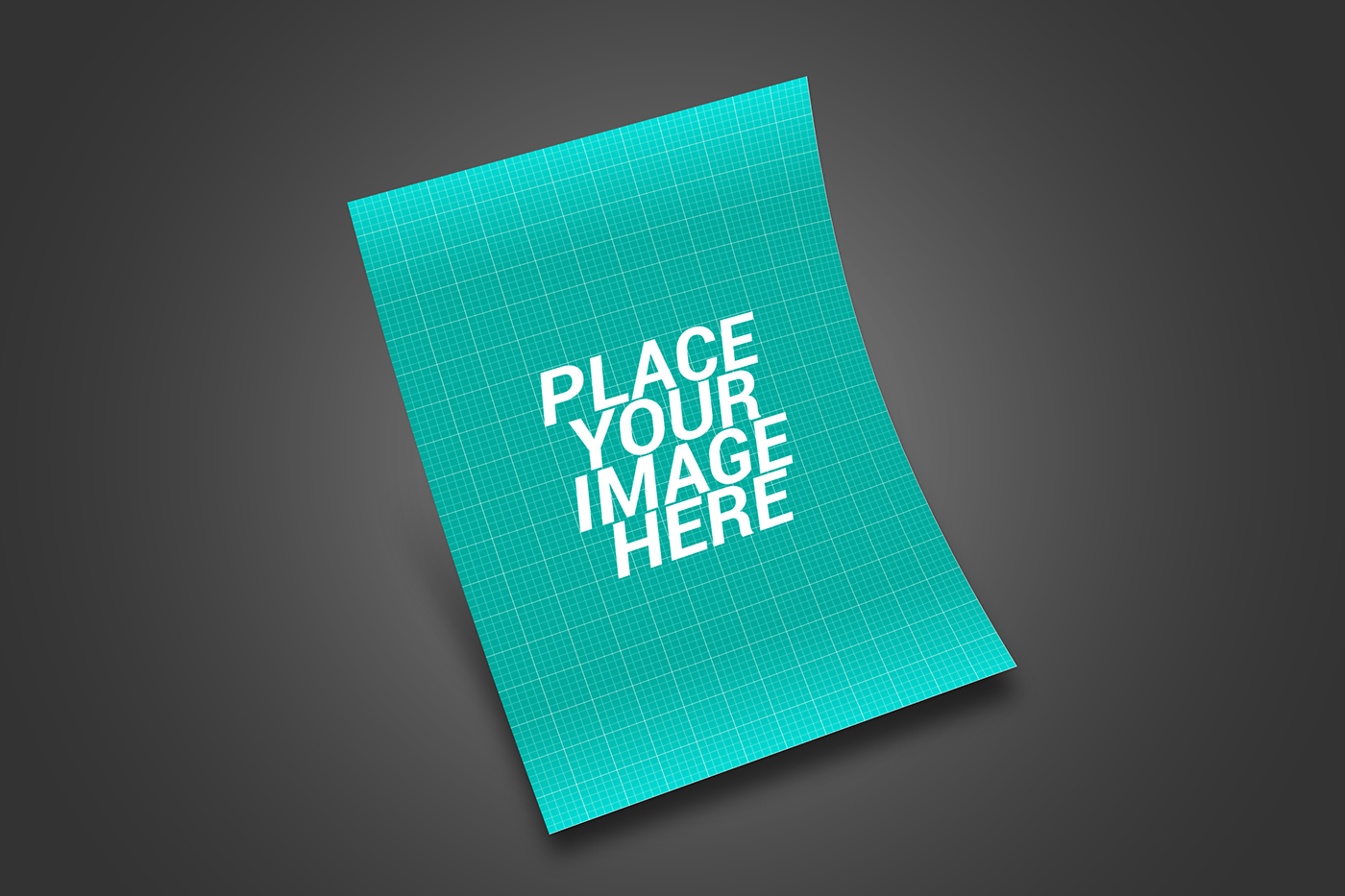 free psd files of flyer mockups