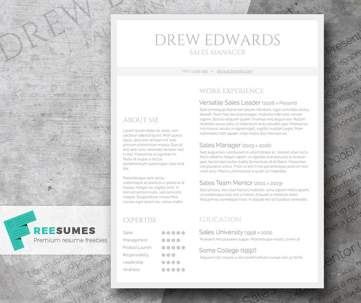 free marketer cv resume template in microsoft word  doc