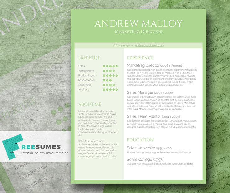 Free Creative Green CV Resume Template In Minimal Style Microsoft Word DOC Format